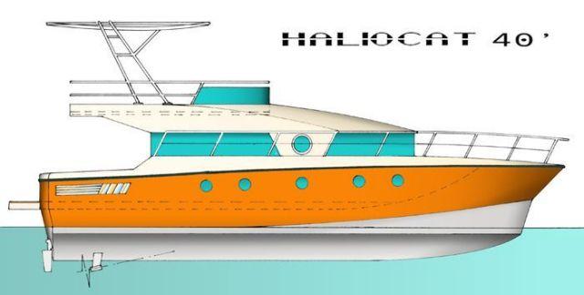 Haliocat 40''